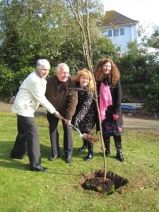 2011 Planting